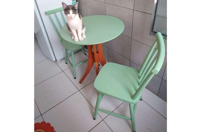 Cozinha compacta decorada com mesa bistrô Juliette e cadeiras coloridas Mimo